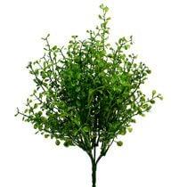 Plantes factices