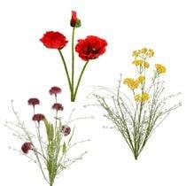 Fleurs de jardin et des champs