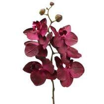 Orchidées artificielles