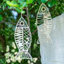 Décoration poisson maritime avec vannerie et coquillages, décoration cintre forme poisson nature 38cm