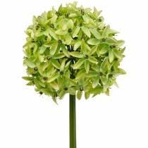 Oignon ornemental Allium, fleur en soie, boule artificielle vert poireau Ø20cm L72cm