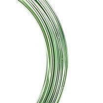 Fil en aluminium 2 mm 100 g vert menthe