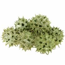 Cornets de gomme sucrée givrés verts 250g