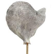 Badam sur un bâton blanchi à la chaux 12cm L55cm 23pcs