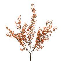 Branche de baies oranges L. 48 cm 1 p.