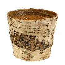Pot bouleau Ø15cm H13cm