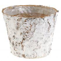 Pot décoratif en bouleau blanchi Ø 18 cm H. 15 cm