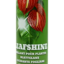 Spray Brillant Feuilles 400ml