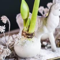 Cire de trempage pour fleurs 1 kg blanche
