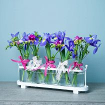 Vase à fleurs bouteilles d'apothicaire décoration verre d'apothicaire sur plateau 38cm