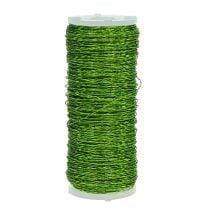 Fil effet bouillon Ø0,30mm 100g 140m vert pomme