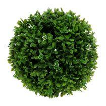 Boule de buis Ø20cm vert