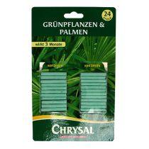 Bâtonnets d'engrais Chrysal plantes vertes (24pcs.)
