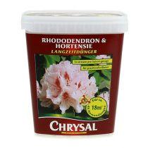 Engrais longue durée Chrysal rhododendron, hortensia 900g