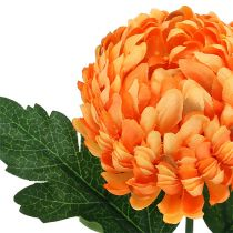 Chrysanthème orange Ø 7 cm L. 18 cm 1 p.