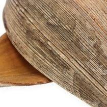 Coquille de noix de coco feuille de coco naturel 25p