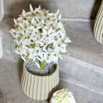 Fleur décorative Allium, boule artificielle poireau, oignon décoratif blanc Ø20cm L72cm