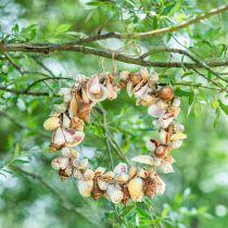 Couronne décorative coquillages et escargots nature Décoration maritime Ø30cm