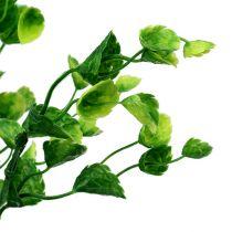 Branche de menthe décorative verte L. 74 cm 6 p.