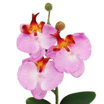 Orchidée décorative en pot rose H 29 cm