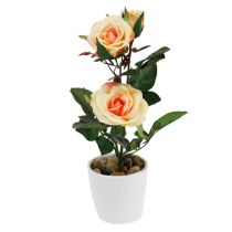 Rose décorative en pot saumon 23 cm