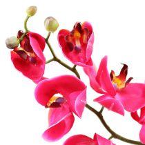 Orchidée décorative fuchsia 77 cm