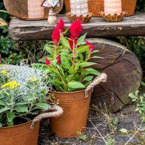 Pot décoratif avec anses, décoration automne, bol en métal inox Ø20cm H19cm