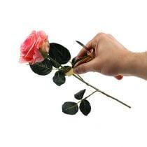 Dissolvant d'épines de rose avec couteau
