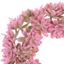 Echeverienkranz Rose Ø18cm 4pièces