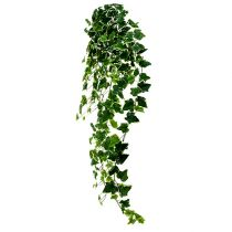 Cintre Ivy real-touch vert-blanc 130cm
