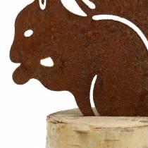 Écureuil rouille sur tronc H22cm