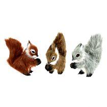Écureuils sur pince 3 couleurs 8 cm 3 p.