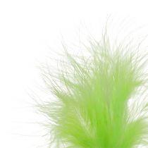 Plumes sur pique Vert clair L30cm 12P