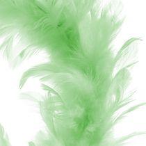 Couronne de plumes Vert clair Ø15cm 4pcs