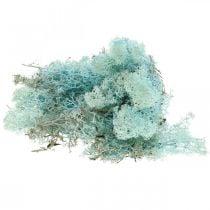 Mousse décorative mousse de renne bleu clair aigue-marine 400g