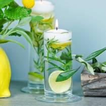Vase en verre avec pied transparent Ø6cm H20cm