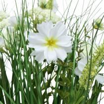 Herbe décorative avec des fleurs de Cosmea dans un bol H45cm