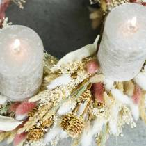 Herbe de queue de lapin fleuriste sèche Lagurus rouge-brun 100g