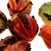 Fruits d'automne 3.5cm rouge, marron 24pcs