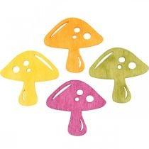 Champignons épars, décorations d'automne, champignons porte-bonheur à décorer orange, jaune, vert, rose H3,5 / 4cm L4 / 3cm 72pcs