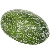 Melon miellat moitié 22,5 cm orange clair