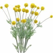 Drumstick Fleurs en soie artificielle jaune Craspedia