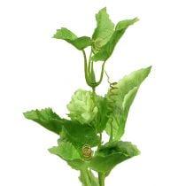 Branche de houblon 70cm vert 2pcs