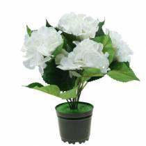 Hortensia dans un pot de fleur Artificiel Blanc 35cm