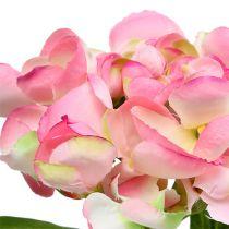 Hortensia rose 33cm