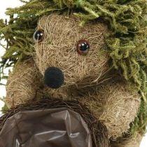 Hérisson avec panier vert, décoration d'automne à planter, panier décoratif pour plantes H24cm Ø9.5cm