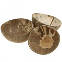 Bol de décoration en noix de coco naturel poli 6pcs