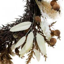 Guirlande décorative gazon artificiel sec et fruits porte couronne Ø50cm