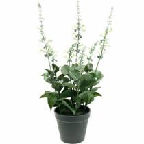 Pot de lavande artificielle, lavande décorative, fleur de soie en blanc