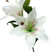 Lily blanc 66cm